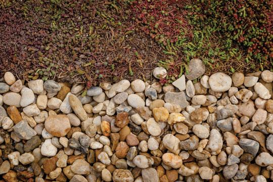 Plocha kameniva